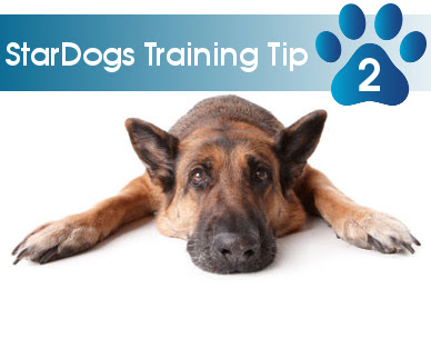 training tip 02